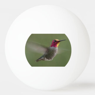 Ping Pong Ball with a flying hummingbird image