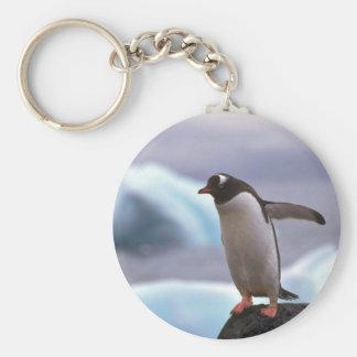 Pingouin de Gentoo Porte-clef