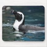 Pingouin de natation tapis de souris