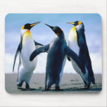 Pingouins Tapis De Souris