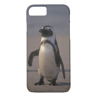 Pinguim africano (demersus do Spheniscus) ou Jacka iPhone 7 Case