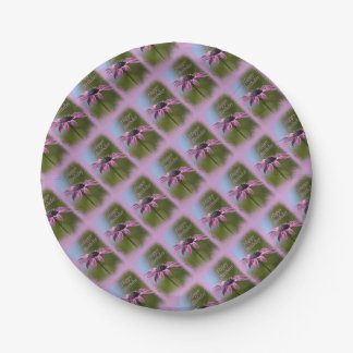 Pink African Daisy Happy Birthday 7 Inch Paper Plate
