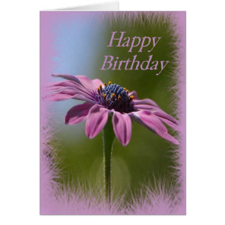 Pink African Daisy Happy Birthday Card