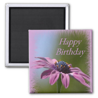 Pink African Daisy Happy Birthday Magnet