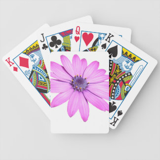 Pink Afrıcan Daisy With Transparent Background Bicycle Playing Cards