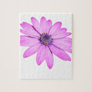 Pink Afrıcan Daisy With Transparent Background Jigsaw Puzzle
