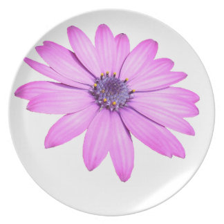 Pink Afrıcan Daisy With Transparent Background Party Plate