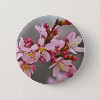 Pink Against A Gray Sky Japanese Cherry Blossoms 2 Inch Round Button
