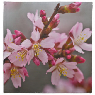 Pink Against A Gray Sky Japanese Cherry Blossoms Napkin