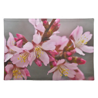 Pink Against A Gray Sky Japanese Cherry Blossoms Placemat