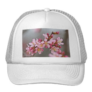 Pink Against A Gray Sky Japanese Cherry Blossoms Trucker Hat