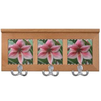 Pink Amaryllis Coat Rack