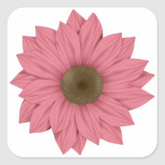 Pink and Brown Daisy Square Sticker