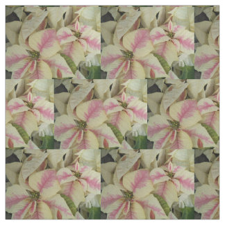 Pink and Cream Poinsettias Floral Fabric