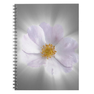 pink and gray notebook
