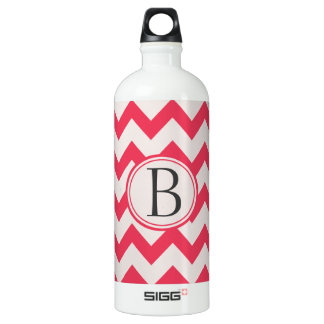 Pink and Grey/Grey Chevron Zig Zag Pattern Initial Water Bottle