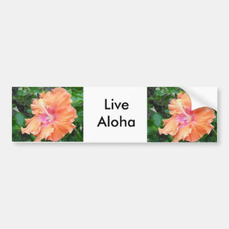 Pink and Orange Hibiscus  Products Bumper Sticker