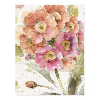 Pink and Orange Primrose Postcard