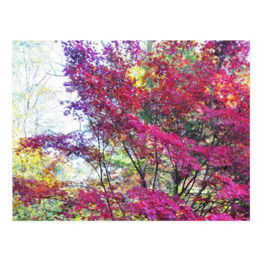 Pink And Purple Leaves Postcard
