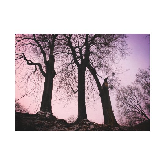 Pink And Purple Twilight Canvas Print