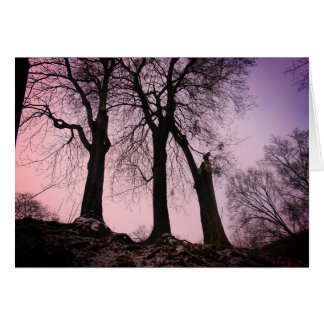 Pink And Purple Twilight In The Woods Card