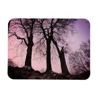 Pink And Purple Twilight In The Woods Magnet