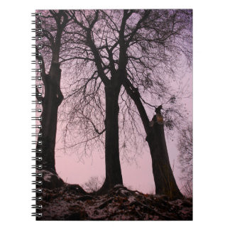 Pink And Purple Twilight In The Woods Notebooks