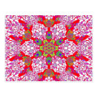 Pink and Red Kaleidoscope Postcard