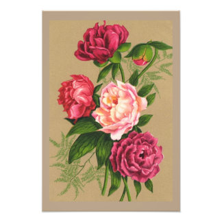 Pink And Red Roses Painting Photo Art