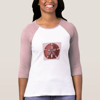 Pink and White 3/4 Sleeve T-shirt With Sand Dollar