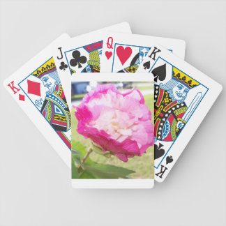 pink and white changeable hibiscus bloom bicycle playing cards