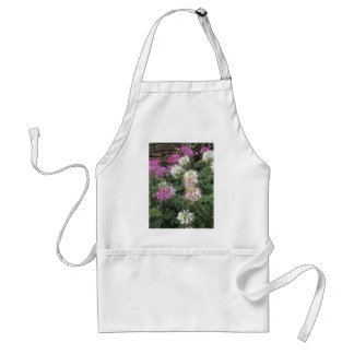 Pink and White Cleome Blooms Apron