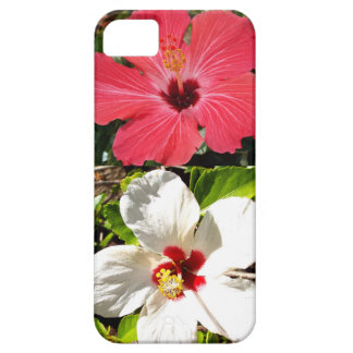 Pink and White Hibiscuses iPhone 5 Case