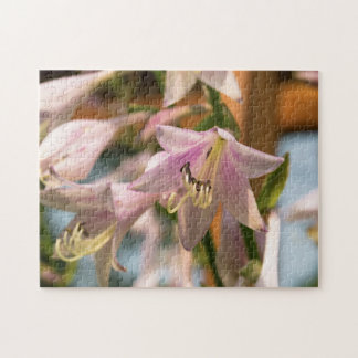 Pink and White Hosta Flowers Jigsaw Puzzle
