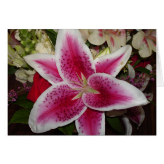 pink and white lily flower card