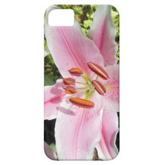 Pink and White Lily Flower Case For The iPhone 5
