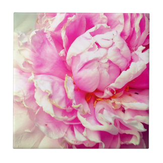 Pink and White Peonies Tile