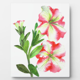 Pink and White Petunias Floral Art Plaque