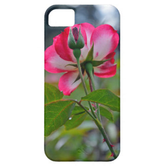 Pink and white rose case for the iPhone 5