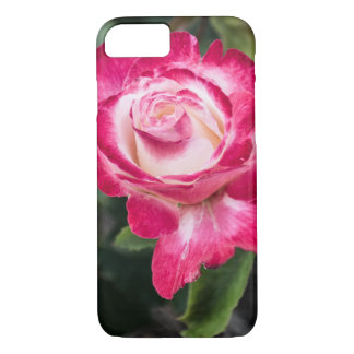 Pink and White Rose iPhone/Galaxy/iPad Case