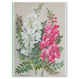 "Pink and White Snapdragons 17"" x 23""  Tissue Paper"