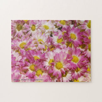 Pink and Yellow Daisy's Puzzle