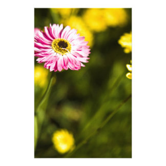 pink and yellow flower stationery design