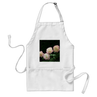 Pink and yellow rose blooms standard apron