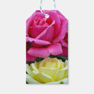 Pink and yellow roses floral print pack of gift tags