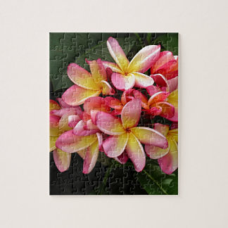 Pink and Yellow Tropical Plumeria Flowers Puzzle