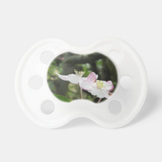 Pink apple flower in spring . Tuscany, Italy Baby Pacifier