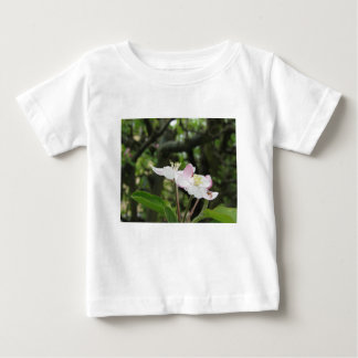 Pink apple flower in spring . Tuscany, Italy Baby T-Shirt