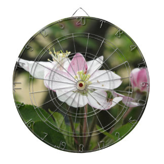 Pink apple flower in spring . Tuscany, Italy Dart Boards