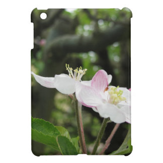 Pink apple flower in spring . Tuscany, Italy iPad Mini Case